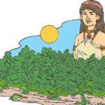 La leyenda de la yerba mate